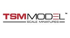 TSM-Model