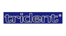 Hersteller: Trident