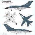 Airpower87 221600311 Panavia Tornado IDS BW
