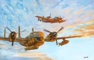 Roden 410 OV-1D Mohawk
