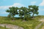 Heki 1160 Apfelbäume