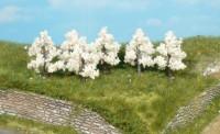 Heki 1163 Apfelbäume blühend