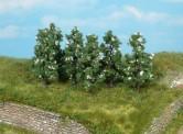 Heki 1172 Birnbäume