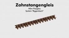 ZEITGEIST-Models 650000 Zahnstangen-Flexgleis System Riggenbach