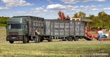 Kibri 12248 MAN F90 HD Viehtransport-HZ