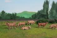 Van Petegem Scenery 0002 Kühe Braunvieh 6 Stück