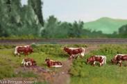 Van Petegem Scenery 0006 Kühe Pinzgauer 6 Stück