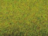 Noch 00012 Grasmatte Sommerwiese, 200 x 100 cm