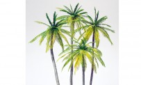Preiser 18600 Palmen. 4 Stück. Bausatz