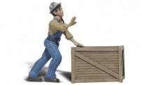 Woodland WA2523 Calvin P. Crate