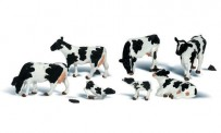 Woodland WA2724 Holstein Cows