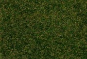 Faller 170208 Streufasern Wildgras, dunkelg