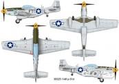Trumpeter 739325 P-51D Mustang