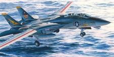 Hasegawa 607246 F-14A Tomcat