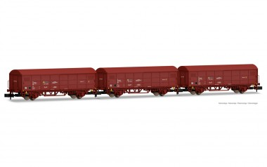 Arnold HN6527 RENFE gedeckte Güterwagen-Set 2-tlg Ep.4