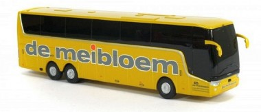Holland oto 8-1148Y VanHool Astron TX de meibloem gelb